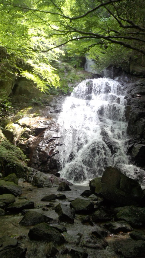 糸島 二丈 千寿院の滝1