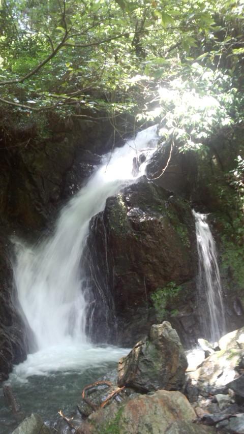 うきは 魚返りの滝