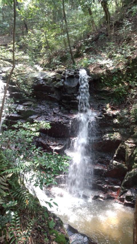 油山 白波の滝