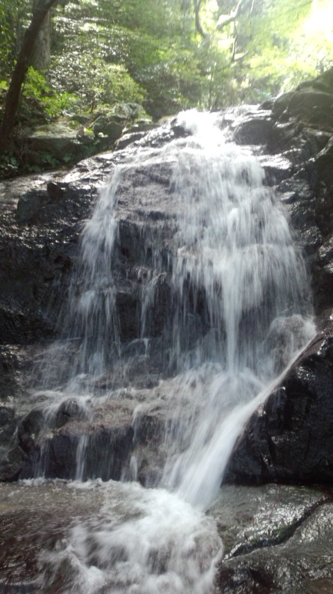 糸島 二丈町 鳴滝 中段1