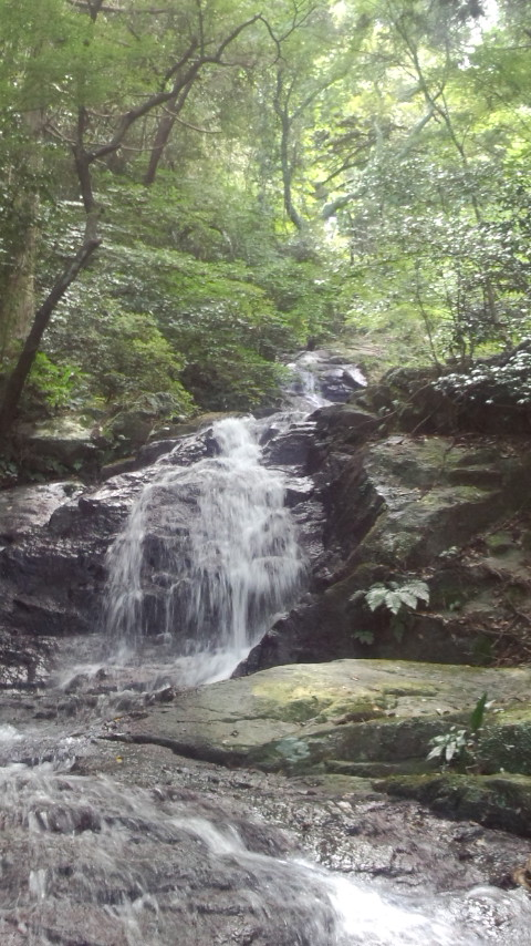 糸島 二丈町 鳴滝 中段2