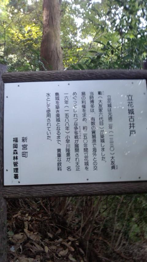 立花山城 古井戸跡